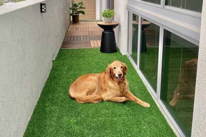 Why Artificial Turf is The Right Choice For You!